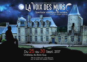 SON ET LUMIERE THEATRAL